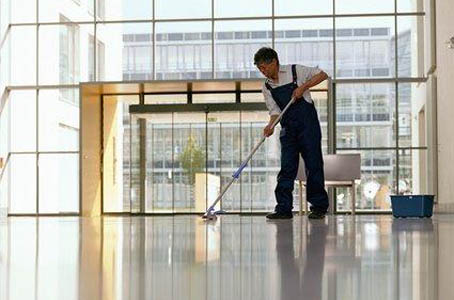 professionalcleaning[1]